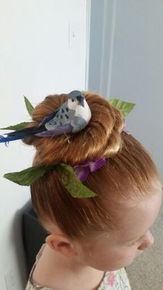 Crazy hair day bird nest