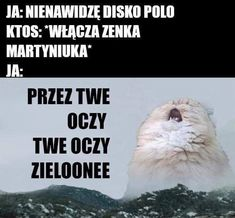 Funny Images, Funny Pictures, Polish Memes, Weekend Humor, Dark Memes, Quality Memes, Funny Relatable Memes, Best Memes, I Laughed
