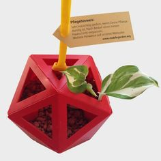Mobile #Garden Readymade   Der Mobile Garden Readymade kommt mit: dem #Blumentopf (bereits zusammengebastelt), einem Gummiband, einer Pflanze (#Efeu) und dem Granulat oder der Erde.  Über das Produkt  Mit dem #MobileGarden Readymade bekommst Du einen zusammengebastelten Mobile Garden. Granulat und Pflanze sind mit dabei. Du musst nur die Box öffnen, die Verpackung entfernen und schon kannst Du mit der Pflege beginnen und den Mobile Garden – wenn gewünscht – auf Planthub.de einstellen. Wir wü