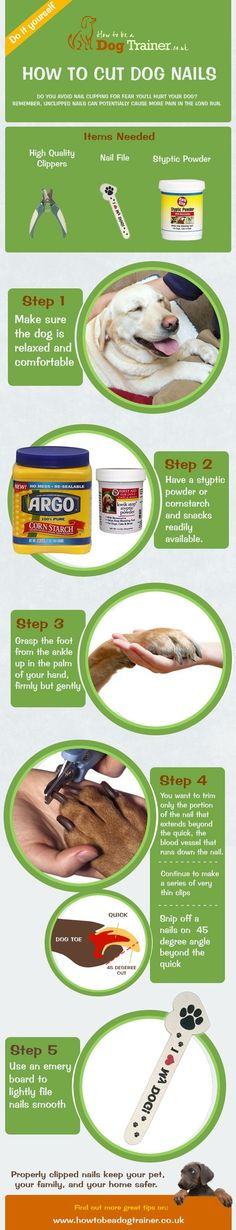 Click here for a simple guide to show how to cut your dogs nails properly.  http://www.howtobeadogtrainer.co.uk/how-to-cut-dogs-nails-instructographic/