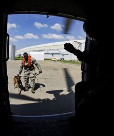 Staff Sgt. Winston Campbell and military working dog, Lleonard, advance toward a Sikorsky MH-60T Jayhawk during a training session with the U.S. Coast Guard June 30, 2014, at Air Station Clearwater, Fla. Exposing a dog to the noise and high altitude uses successive approximation to acclimate the dog, which is crucial when deployed. Campbell is a 6th Security Forces Squadron MWD handler. (U.S. Air Force photo/Senior Airman Melanie Bulow-Gonterman)