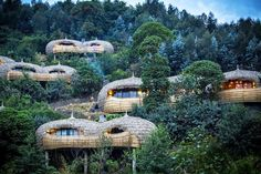 Ten of The Worlds Most Beautiful Tree House Restaurants Grand Popo, Chutes Victoria, Villas, Nature Sauvage, Volcano National Park, Bungalow, Parc National, House Restaurant, Bali