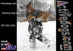 Working Dog Equipment (vests, leashes, ADA info cards)