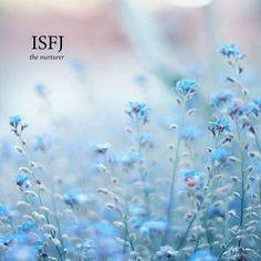 22 Free Isfj music playlists   8tracks radio