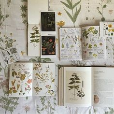 """""""Look how awesome this photo is by @thecuriousnomad of my #smalladventuresjournal and her beautiful collection of botany books. Thank you so much for this photo! I love it."""""""