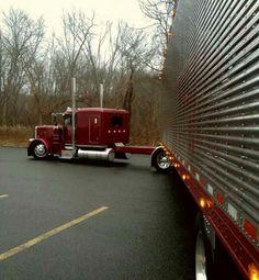 Peterbilt 379, Peterbilt Trucks, Show Trucks, Big Rig Trucks, Custom Big Rigs, Custom Trucks, Turn Down For What, Heavy Truck, Big Wheel