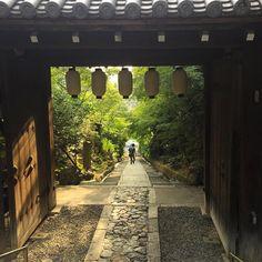 Back in #kyoto #kodaiji #japan