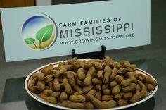 http://www.growingmississippi.org/slow-cooker-boiled-peanuts/