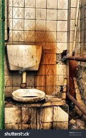 Pregnancy Woes: The Public Toilet
