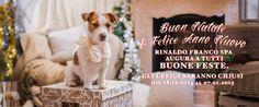 Tantissimi auguri di Buon Natale e Felice anno Nuovo da Record!!!