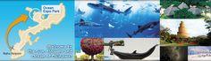 Ocean Expo Park Official Site