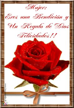 Imágenes Cristianas: Día de la Mujer Happy Woman Day, Happy Women, Beautiful Red Roses, Inspirational Thoughts, Ladies Day, Raspberry, Pure Products, Tableware, Black Tourmaline