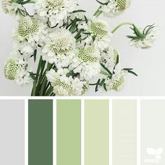 29 Super Ideas For Exterior Paint Colora Cream Design Seeds