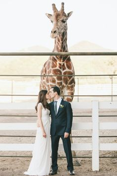 you and me and Stanley the African Giraffe
