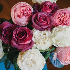 Romantic trio of some of our rose and garden rose varieties. Featured here are Salamansar, Matilda and Moonstone.