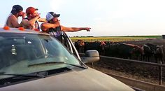 Country Music Lyrics - Quotes - Songs Viral content - Hunky Farm Boys Turn 'Fresh Prince' Theme Song Into Redneck Masterpiece - Youtube Music Videos https://countryrebel.com/blogs/videos/hunky-farm-boys-turn-fresh-prince-theme-song-into-redneck-masterpiece