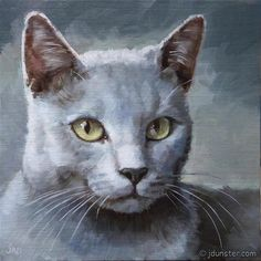 "Daily Paintworks - ""Grey Kitty"" - Original Fine Art for Sale - © J. Dunster"