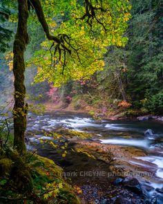 Salmon River II - Fall Season