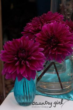 Teal and Purple Wedding Decor by Country Girl Collections