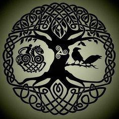 Jul 2015 - Inspiration for Justin Petitt's Tattoo. See more ideas about Yggdrasil tattoo, Celtic art and Celtic tree of life. Yggdrasil Tattoo, Symbole Protection, Protection Symbols, Celtic Symbols, Celtic Art, Celtic Raven, Viking Raven, Celtic Tattoos, Viking Tattoos
