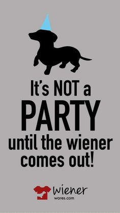 Excellent ! We're glad you love it ! Lets know if you get questions at all , we're happy toassist you to : ) Here's my shop ==> https://etsytshirt.com/dachshund #partynight