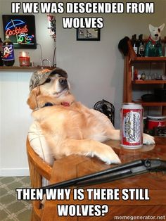 Redneck Retriever - If we was descended from wolves then why is there still wolves?