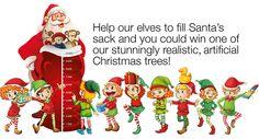2015 Christmas Tree Giveaway | Hayes Garden World