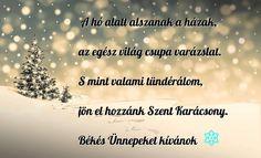 Advent, Seasons, Winter, Creative, Christmas, Winter Time, Xmas, Seasons Of The Year, Navidad
