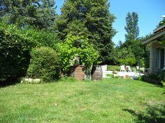 Le jardin de l'agence Partir En Immobilier où régne la biodiversité et la protection de l'environnement malgré la ville...