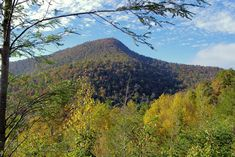 See the famous Cold Mountain near Asheville North Carolina with great views from the Blue Ridge Parkway. Best Places To Camp, Camping Places, Camping Spots, Camping World, Camping Stuff, Camping Tips, Utah Camping, Yellowstone Camping, California Camping