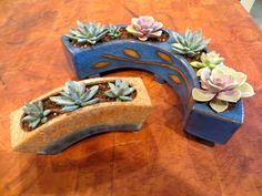 Two extruded planters with succulents