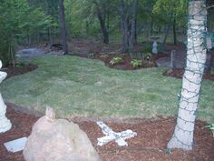 WOW! the sod really made my flower bed stand out, love it:)