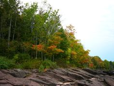 Just as the leaves are changing in the Porcupine Mountains. What a pretty variety of color!