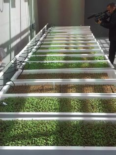 """Rooftop Farming Grows at New Bronx Housing Project: Built on top of a new affordable housing development, this project could be the first example of commercial hydroponic agriculture integrated into a residential structure."" (via Agri-Tecture.com) #RooftopGarden"