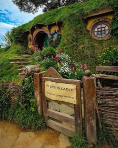 """@live_life_love_travel on Instagram: """"Visited the Shire today, surprisingly good tour especially if you're a fan. Fun way to finish the…"""" Live Life Love, New Zealand North, Auckland, Us Travel, Adventure Travel, Tours, Movie, Fan, Island"""