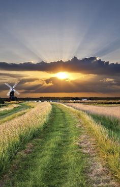 Explore the Norfolk Broads