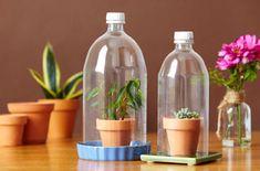 Uses for plastic bottles