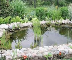 Install a pond - In times past, artificial ponds, lakes, fountains and water cascades were possible only in grand gardens. Now anyone can easily devise a water feature to suit their garden and their budget, and enjoy the enchantment, peace and serenity it brings.