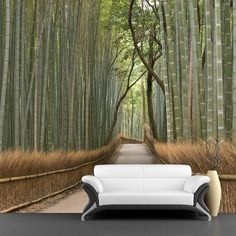 Jungle Wall Mural Decals - Wonder the life of countryside? You would be easily allured to walk into the road in the the bamboo forest by the realistic picture.