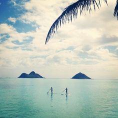 Remando hacia la mejor terapia #Paddlesurfing!