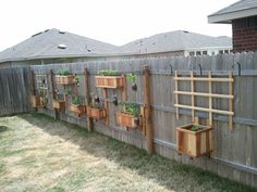 Vegetable and Herb garden on the fence. Easy to hang, not too costly. Veggies in boxes, herbs in mason jars.