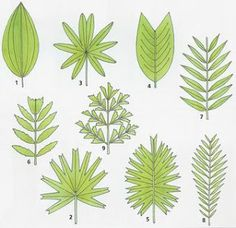 pattern for Ivy and palm fronds to make from paper, green paint & wire