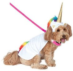 Your little pal will magically light the way with this Light-Up Unicorn Cape Pet Costume by Rubie's! This outfit features a cape attached to a light-up collar that has Velcro closures on the be. Light-Up Unicorn Cape Pet Costume Dog Halloween Costumes, Cute Costumes, Dog Costumes, Halloween Kostüm, Unicorn Halloween, Halloween Items, Costume Ideas, Unicorn Dog Costume, Unicorn Pet