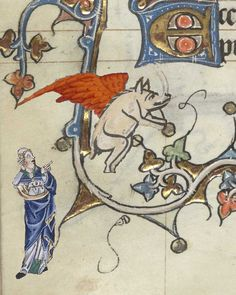 The earliest known sighting of a pigasus occurred #OTD at Hilarius Abbey in 1276, as recorded by an anonymous monk in Harley Har. Har. MS 565: 'The mighty beast unfurled its great wings and flew forth from this place, the creature known to us as the pigasus.'
