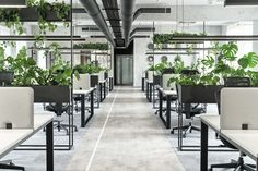 create a welcoming office environment