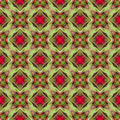 cb4 fabric by bahrsteads on Spoonflower - custom fabric