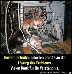 lustiges Bild 'Unsere Techniker.jpg' von Floh. Eine von 14329 Dateien in der Kategorie 'witzige Bilder' auf FUNPOT.