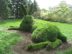 Topiary The Hare, in the Cambridge Sculpture Gardens. I wonder if I can get my boys to do this to the hedge between us and our neighbors? Unique Garden, Topiary Garden, Bunny Art, Dream Garden, Hedges, Yard Art, Garden Inspiration, Beautiful Gardens, Beautiful Beautiful