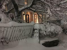 I Love Winter, Winter Snow, Winter Time, Winter Season, A Silent Voice, Snow Angels, Winter Scenery, Christmas Mood, Xmas