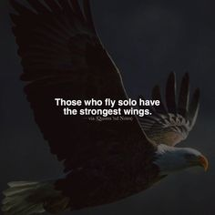 nice Inspirational Positive Quotes :Those who fly solo have the strongest wings....